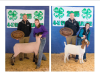 2015 Clover Classic 4-H Sheep/Goat Results