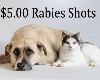 Rabies Vaccination Clinic